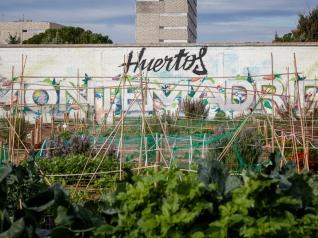 Huertos Montemadrid, situados en el Centro Ponce de León, en Usera.jpg